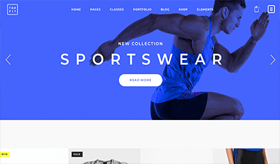 Examples of sports shop websites