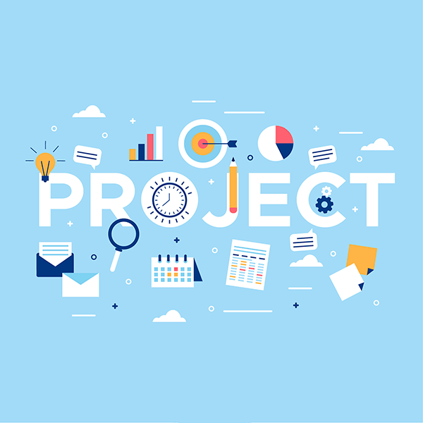 project manager development